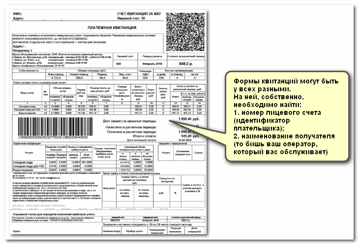 Гладкова 8 красноярск судебные приставы кузнецова елена николаевна
